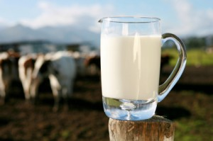 is organic milk better