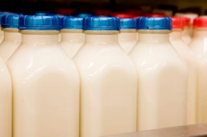 How is Organic Milk processed?